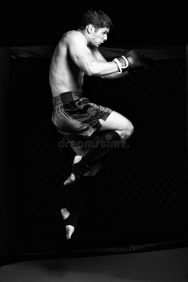 MMA royalty free stock photo