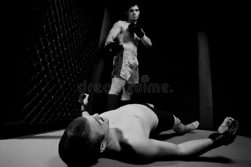 MMA stock photos