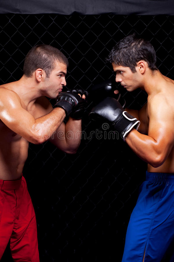 MMA images stock