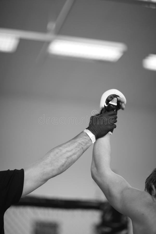 MMA champion. Referee holding up arm of the winner stock images