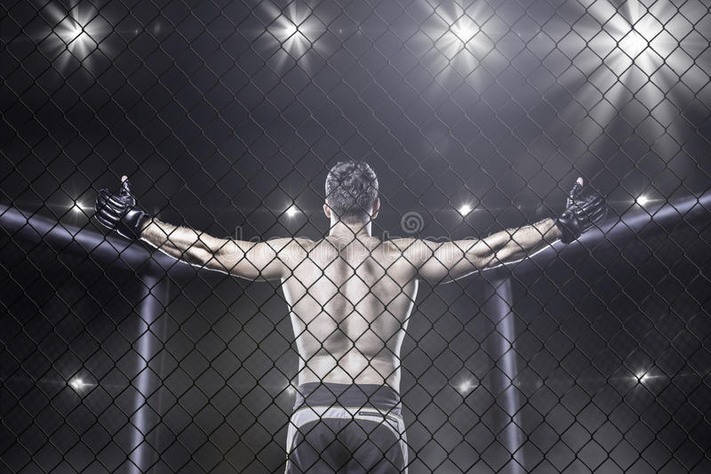 Mma fighter in arena celebrating win, behind view stock image