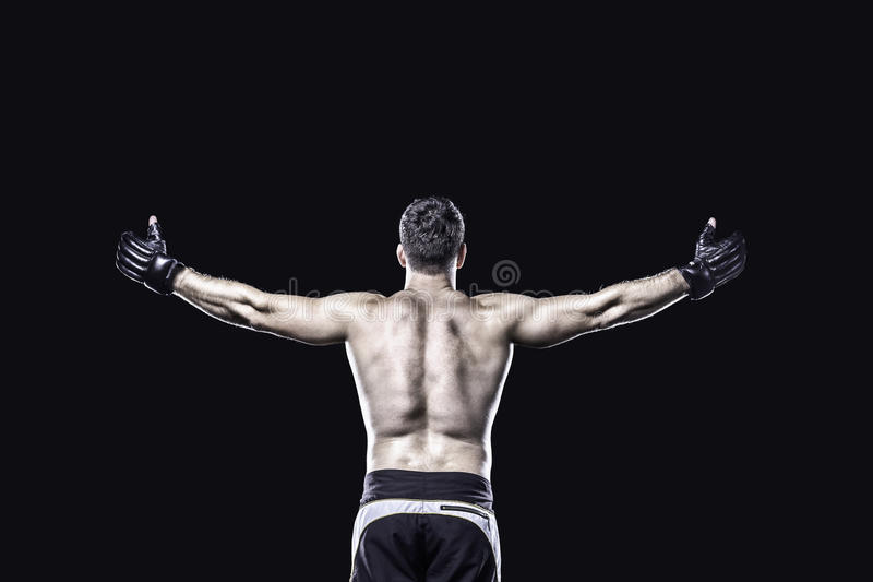 MMA fighter in celebrating victory, behind view, isolated royalty free stock images