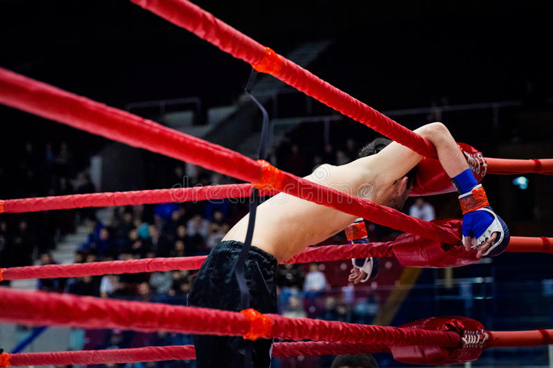 MMA fighter on ropes of the ring. Defeat MMA fighter on ropes of ring after fight stock photography