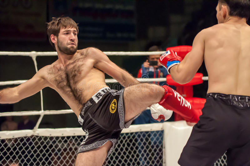 MMA or Fights without rules. Orenburg, Russia - 21 February 2015: Fight in mixed martial arts fighters on the open cup of Orenburg region mixed martial art (MMA stock image