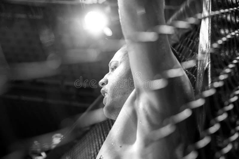 MMA-strijdturnament royalty-vrije stock foto's