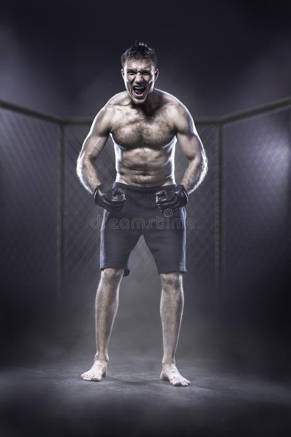 MMA wojownik w klatce obrazy stock