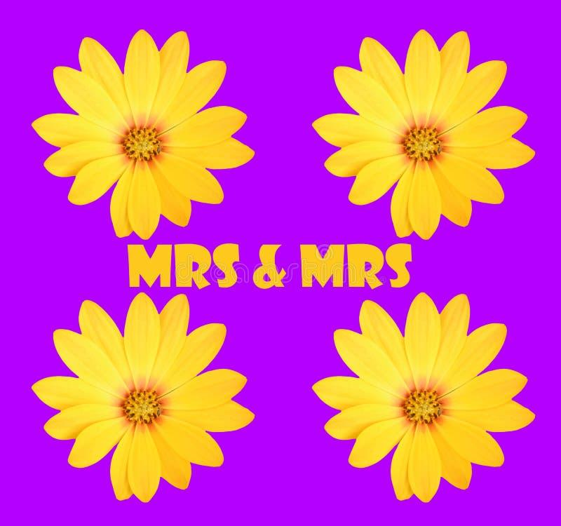 Mme et Mme photos stock