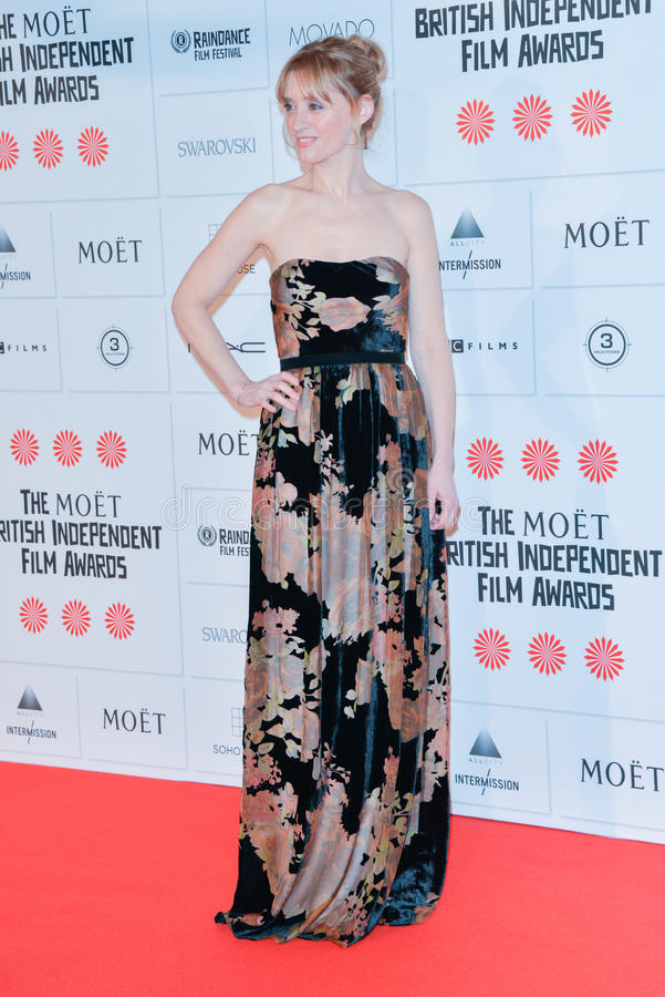 "Moà ""t英国独立电影授予2014年 图库摄影"