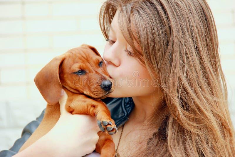 A moça abraça e beija um cachorrinho vermelho do bassê em um fundo da parede de tijolo branca imagens de stock royalty free