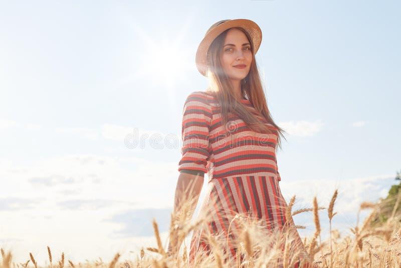 Moça atrativa bonito com o chapéu de palha e o vestido à moda listrado, levantando no campo de trigo durante o por do sol, apreci fotos de stock