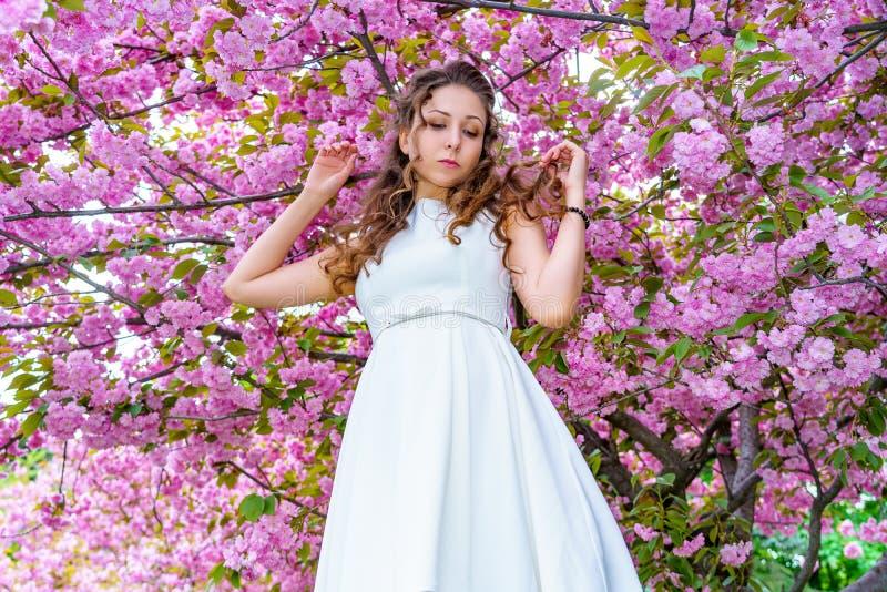 A moça bonita aspira as flores cor-de-rosa, sakura de florescência no jardim da mola imagens de stock