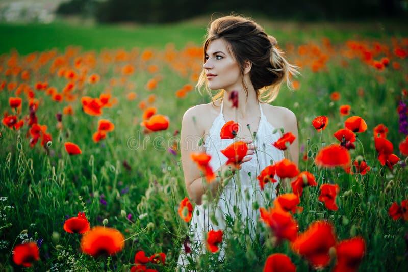 Moça bonita em campos da papoila no por do sol fotografia de stock