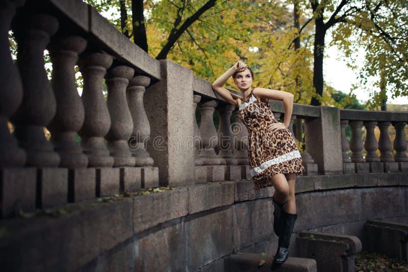 Moça bonita em um vestido da cópia do leopardo fotografia de stock royalty free