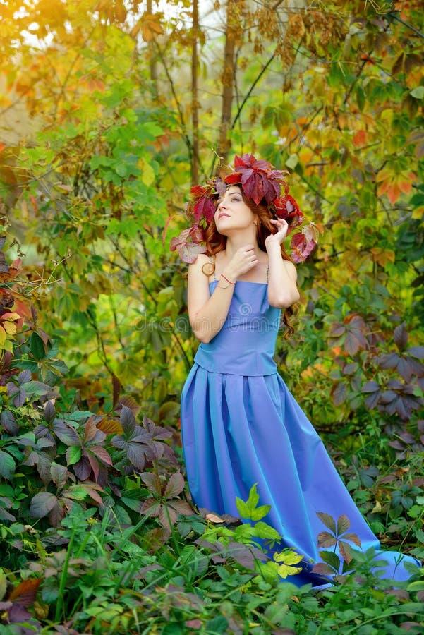 Moça bonita que veste uma grinalda das folhas de outono vermelhas, em um vestido azul, estando contra os arbustos e o levantament imagem de stock royalty free