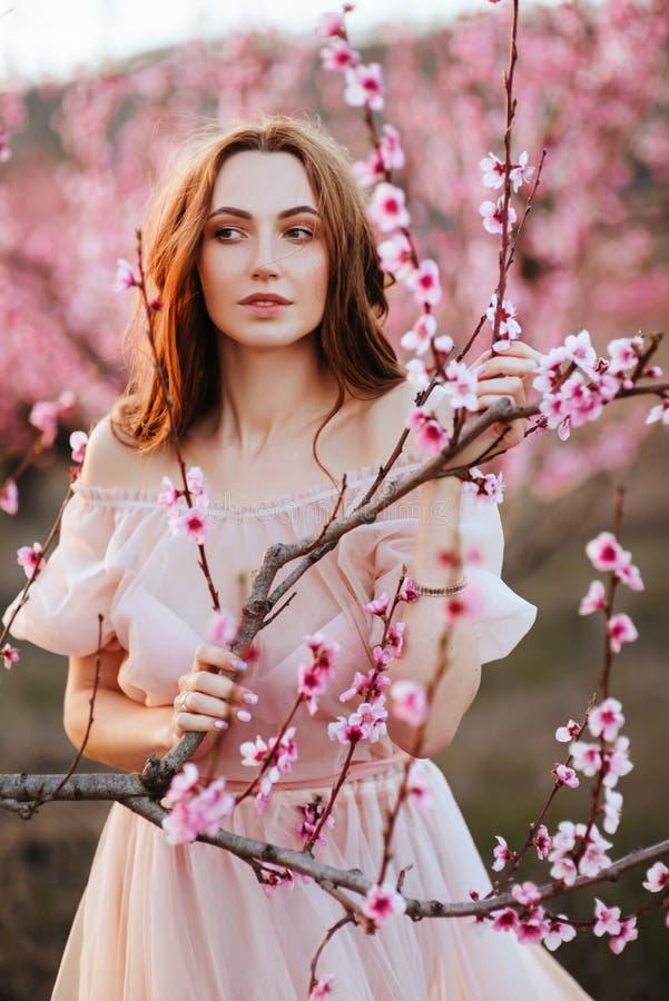Moça bonita sob a árvore cor-de-rosa de florescência imagem de stock