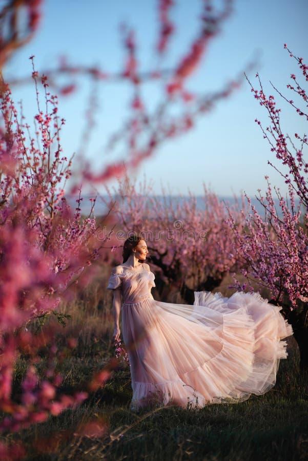 Moça bonita sob a árvore cor-de-rosa de florescência imagem de stock royalty free