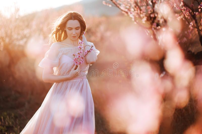 Moça bonita sob a árvore cor-de-rosa de florescência fotografia de stock royalty free