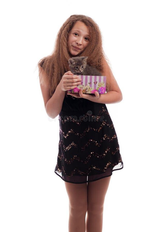 Moça com cabelo longo em um vestido preto festivo com um gatinho cinzento em uma caixa de presente em suas mãos fotografia de stock royalty free