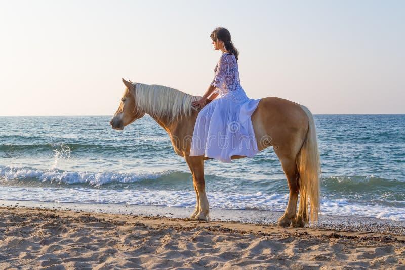 Moça com um cavalo na praia imagens de stock