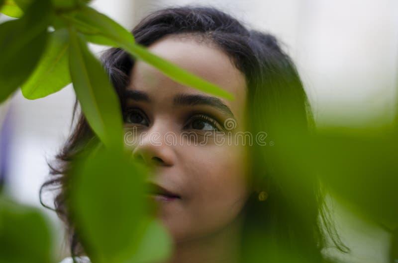 Moça de 19 a 25 anos velho olhando as plantas e apreciando o natural em um estilo de vida do dia de verão imagem de stock