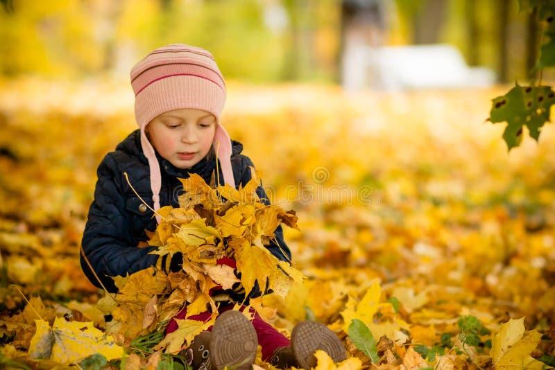 A moça de assento jogada playfully afastado sobre sua cabeça coloriu as folhas de bordo Criança bonito que tem o divertimento no  imagem de stock