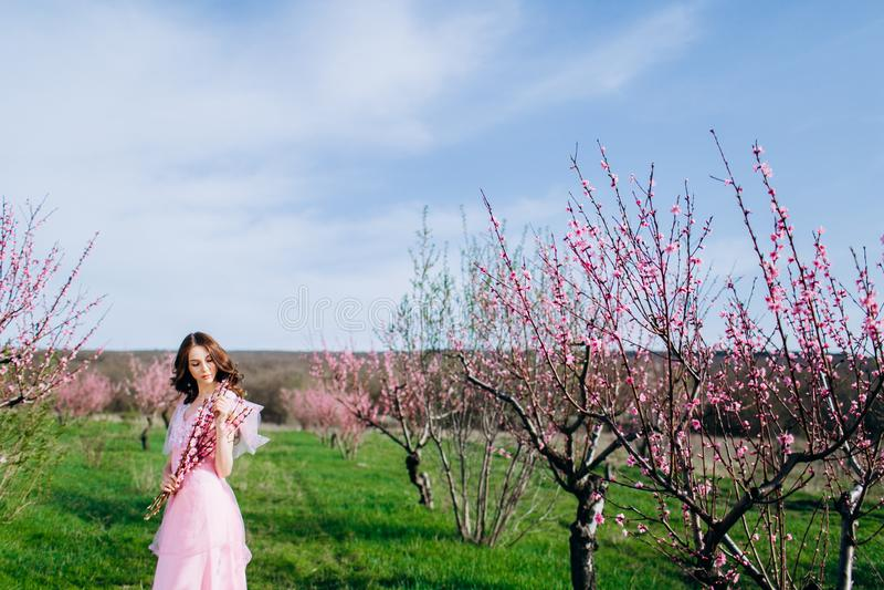 Moça em um jardim florescido cor-de-rosa dos pêssegos em um vestido e em uma composição cor-de-rosa fotos de stock