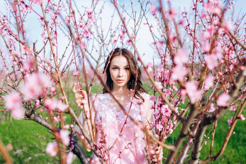 Moça em um jardim florescido cor-de-rosa dos pêssegos em um vestido e em uma composição cor-de-rosa fotos de stock royalty free