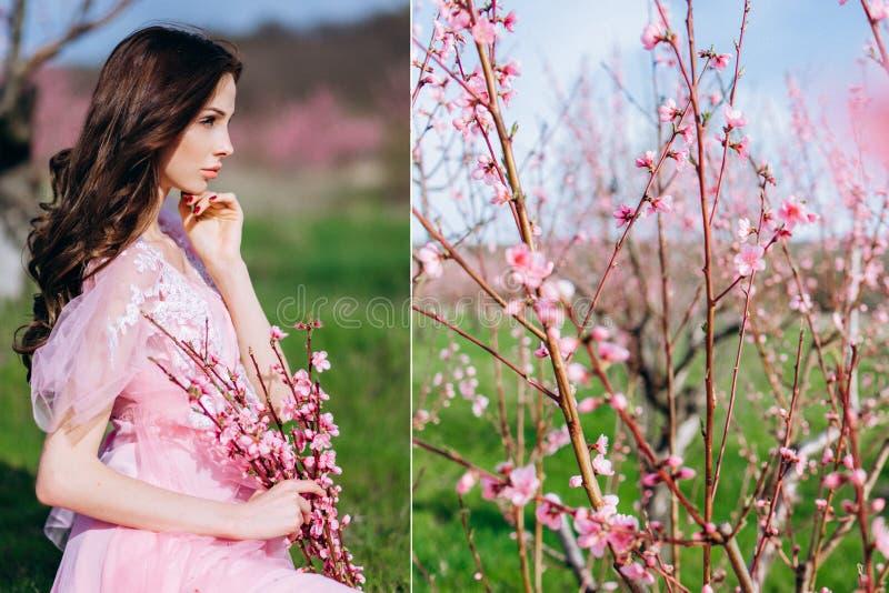 Moça em um jardim florescido cor-de-rosa dos pêssegos em um vestido e em uma composição cor-de-rosa foto de stock royalty free