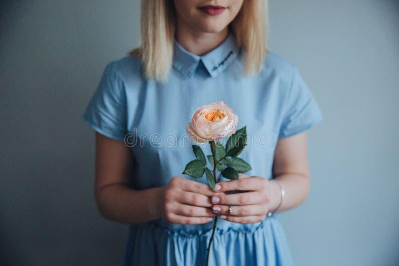 Moça em um vestido azul com uma rosa pion-dada forma peachy imagem de stock royalty free