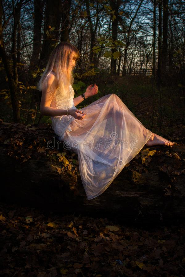 Moça em uma floresta escura em um vestido branco foto de stock royalty free