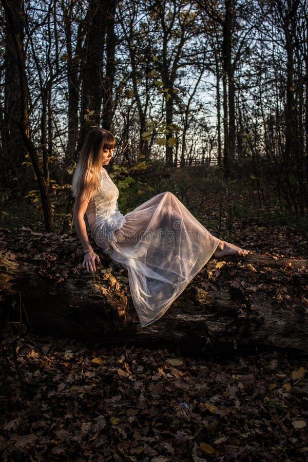 Moça em uma floresta escura em um vestido branco fotografia de stock royalty free