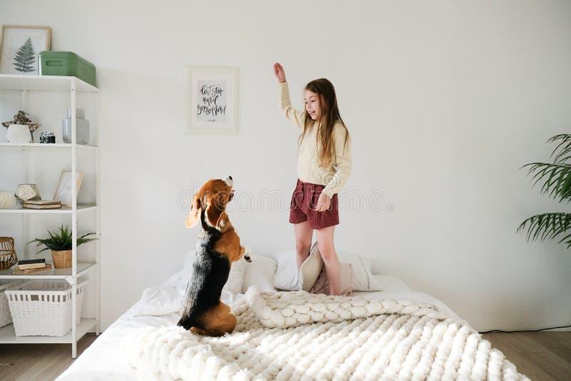 A moça encantador que encontra-se no sofá, olhando o cão do lebreiro e dá a elevação cinco Criança bonito de sorriso que descansa fotos de stock royalty free