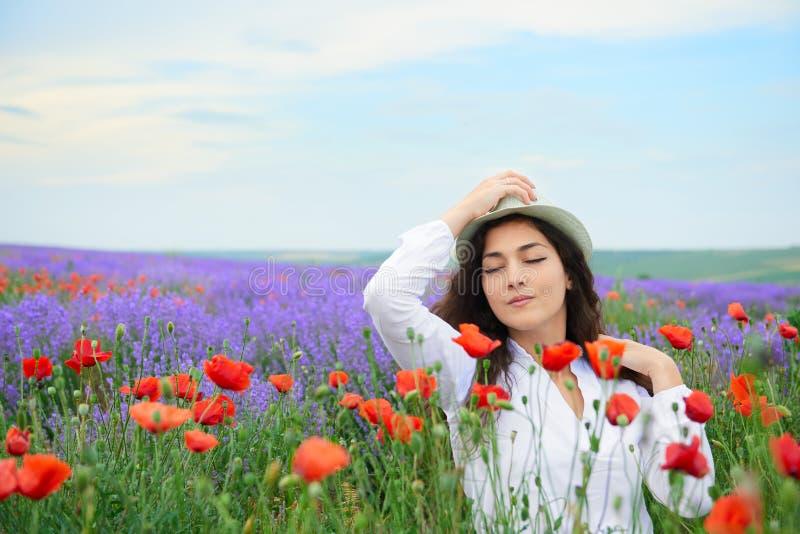 A moça está no campo com as flores vermelhas da papoila, paisagem bonita da alfazema do verão imagens de stock royalty free