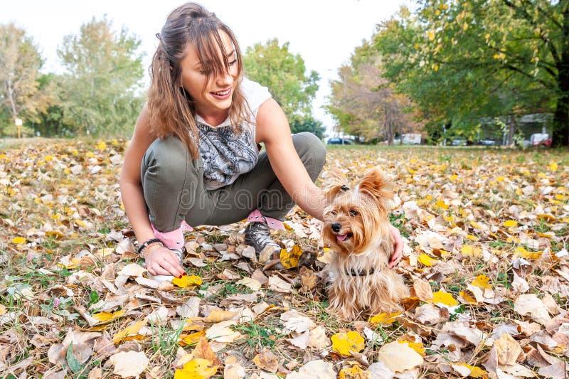 Moça feliz bonita com seu cachorrinho do cão do yorkshire terrier que aprecia e que joga no dia do outono no foco seletivo do par fotografia de stock royalty free