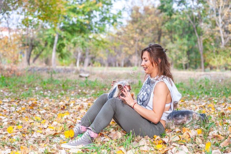 Moça feliz bonita com seu cachorrinho do cão do yorkshire terrier que aprecia e que joga no dia do outono no foco seletivo do par imagem de stock royalty free