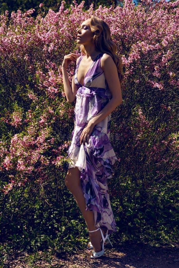Moça flores pequenas cor-de-rosa imagem de stock royalty free