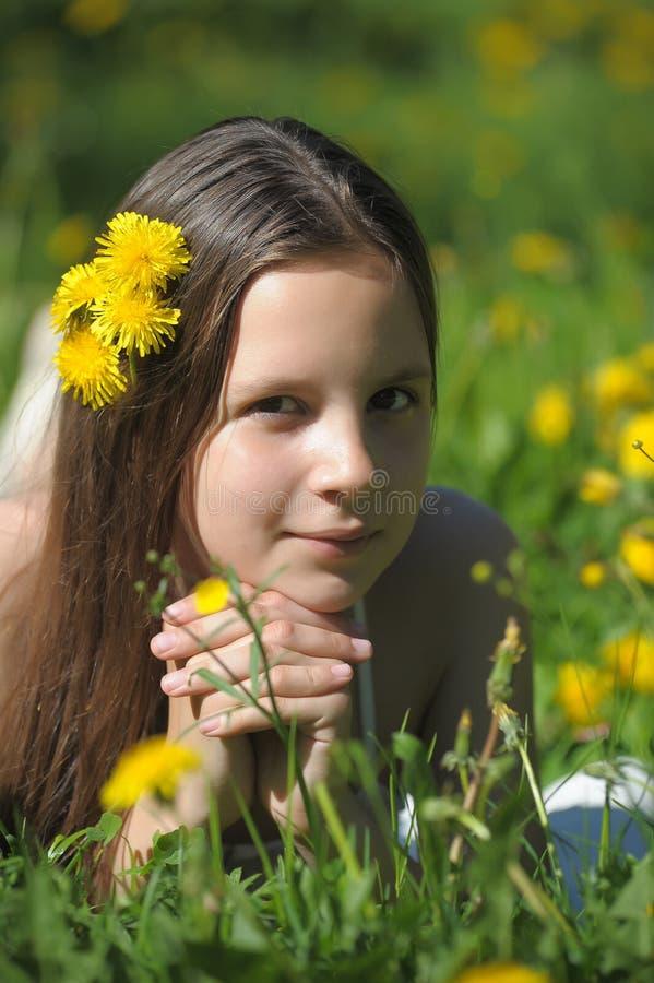 A moça a morena encontra-se em uma clareira com dentes-de-leão fotografia de stock