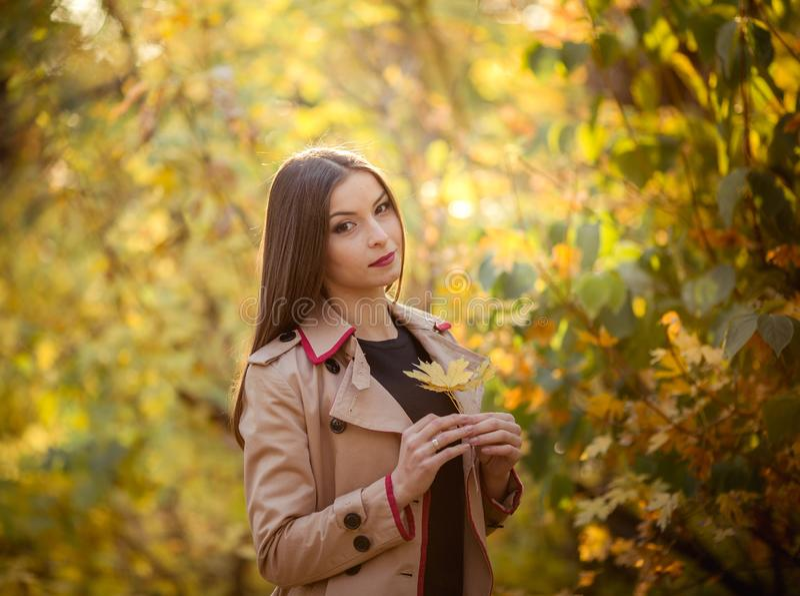 Moça moreno modesta bonita no outono imagens de stock royalty free