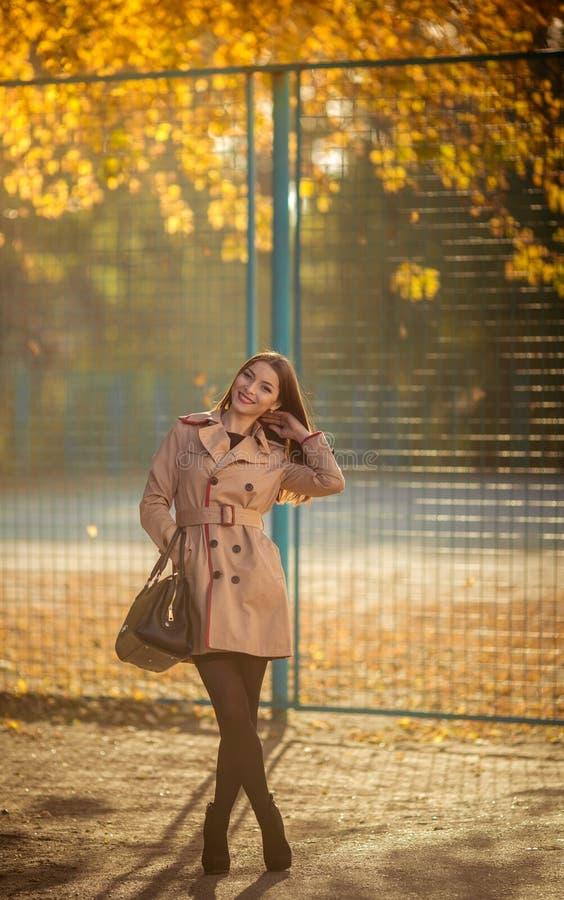Moça moreno modesta bonita no outono imagem de stock