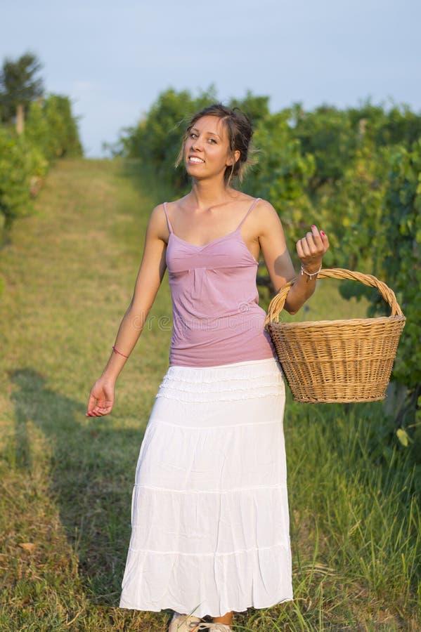 Moça na colheita da uva com a cesta de vime grande para armazenar g fotografia de stock