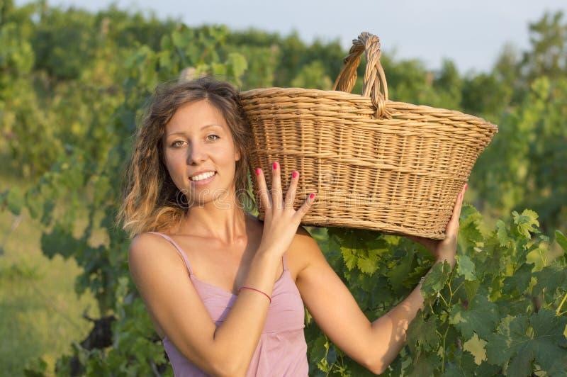 Moça na colheita da uva com a cesta de vime grande para armazenar g foto de stock royalty free