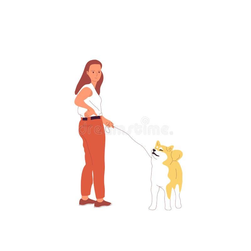 A moça no equipamento ocasional está andando com um cão do inu do shiba em uma trela Isolado no fundo branco Estoque liso dos des ilustração do vetor