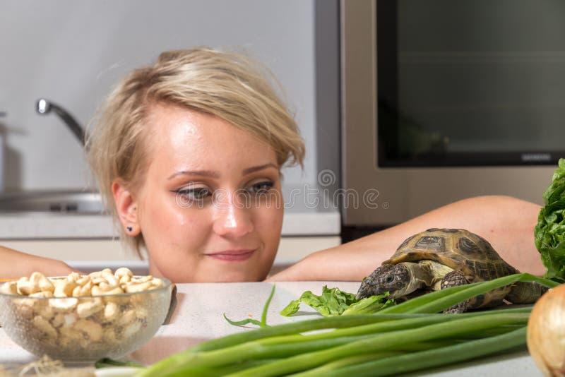 A moça olha fixamente na tartaruga que come a salada fotografia de stock royalty free