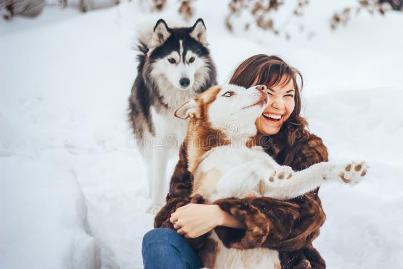 Moça que abraça um inverno do cão de puxar trenós do cão fotos de stock royalty free
