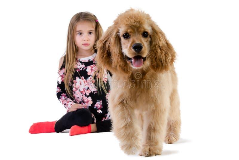 Moça que olha seu cão andar afastado imagens de stock royalty free