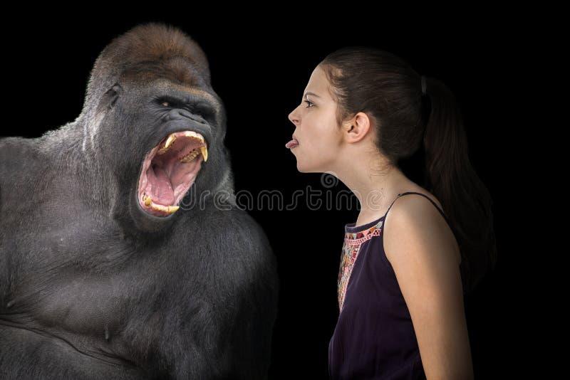 Moça sem medo com um gorila irritado fotos de stock