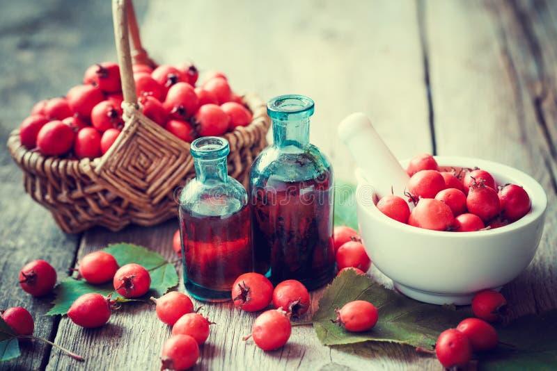 Moździerz głogowe jagody, tincture butelki i cierniowy jabłko w koszu, zdjęcie stock