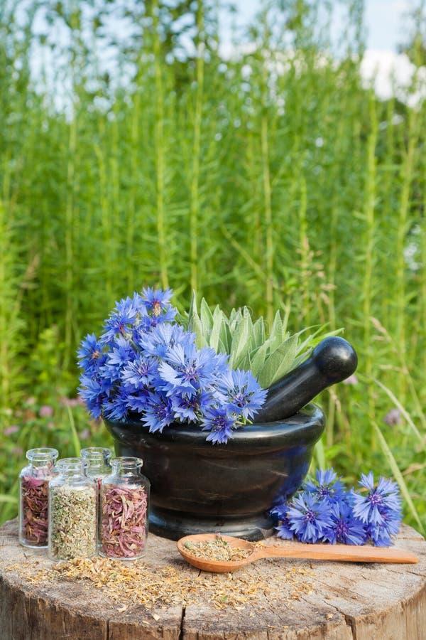 Moździerz z błękitnymi cornflowers mędrzec i, ziołowa medycyna zdjęcie royalty free