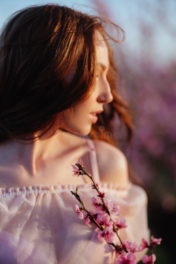 Mo?a bonita sob a ?rvore cor-de-rosa de floresc?ncia foto de stock royalty free