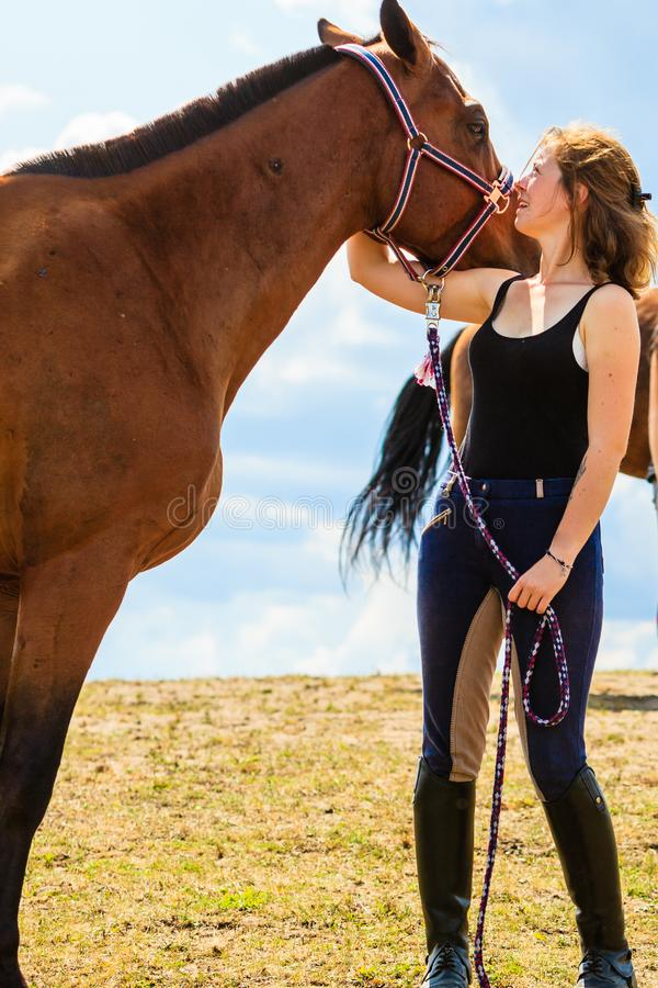 Mo?a do j?quei que beija e que abra?a o cavalo marrom foto de stock